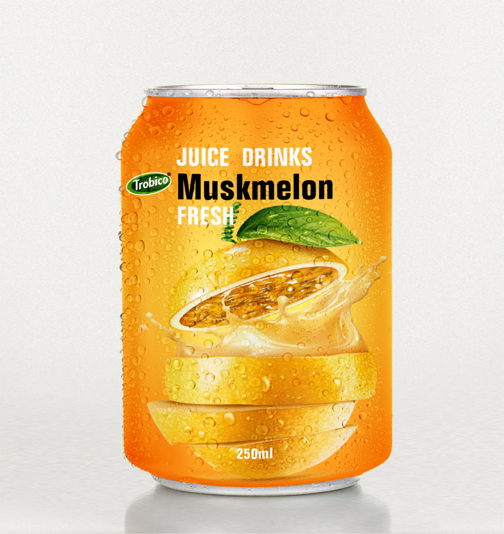 Muskmelon juice drink 250ml short can 2