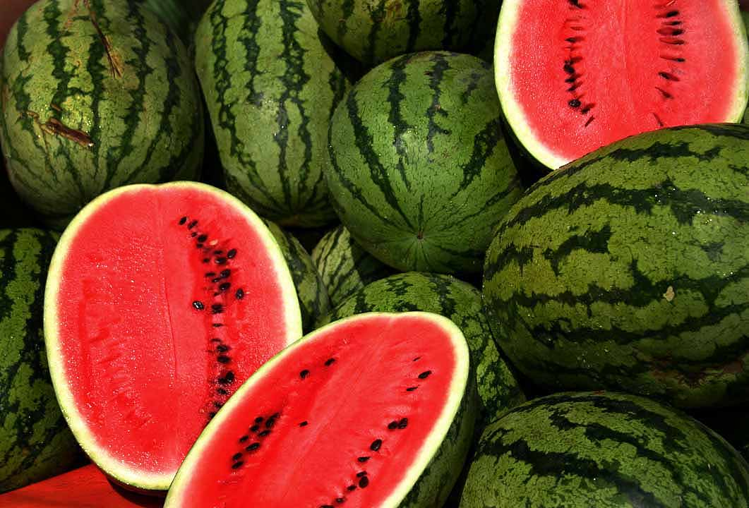 Rita watermelon