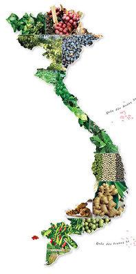 map viet nam as Fruits 2