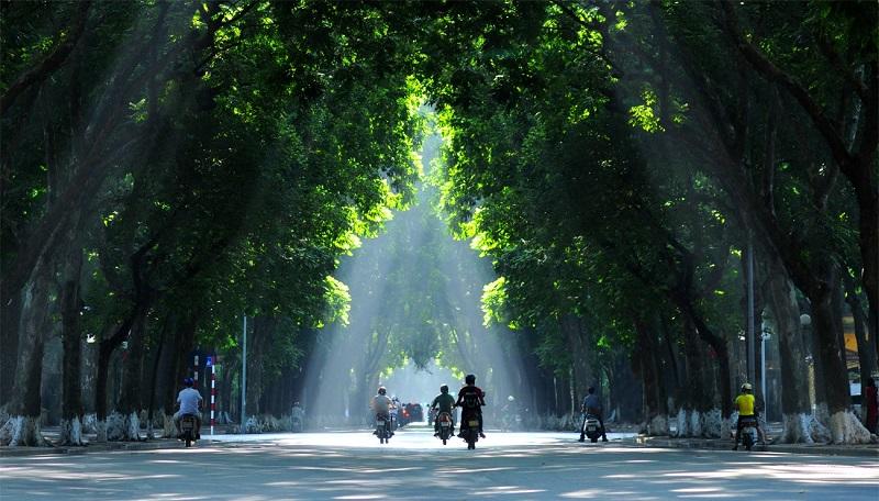 Autumn Season -  The Most Romantic Time Of The Year In Hanoi