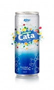 250ml Carbonated Mix Fruit Flavor Drink