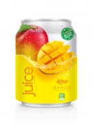 250ml Mango juice  1