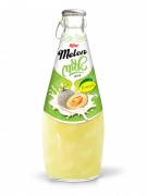 Melon milk 290ml