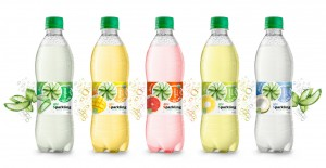Sparkling Aloe vera in Pet 500ml