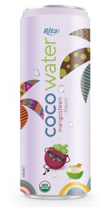 coconut waterwholesale price with mangosteen 320ml
